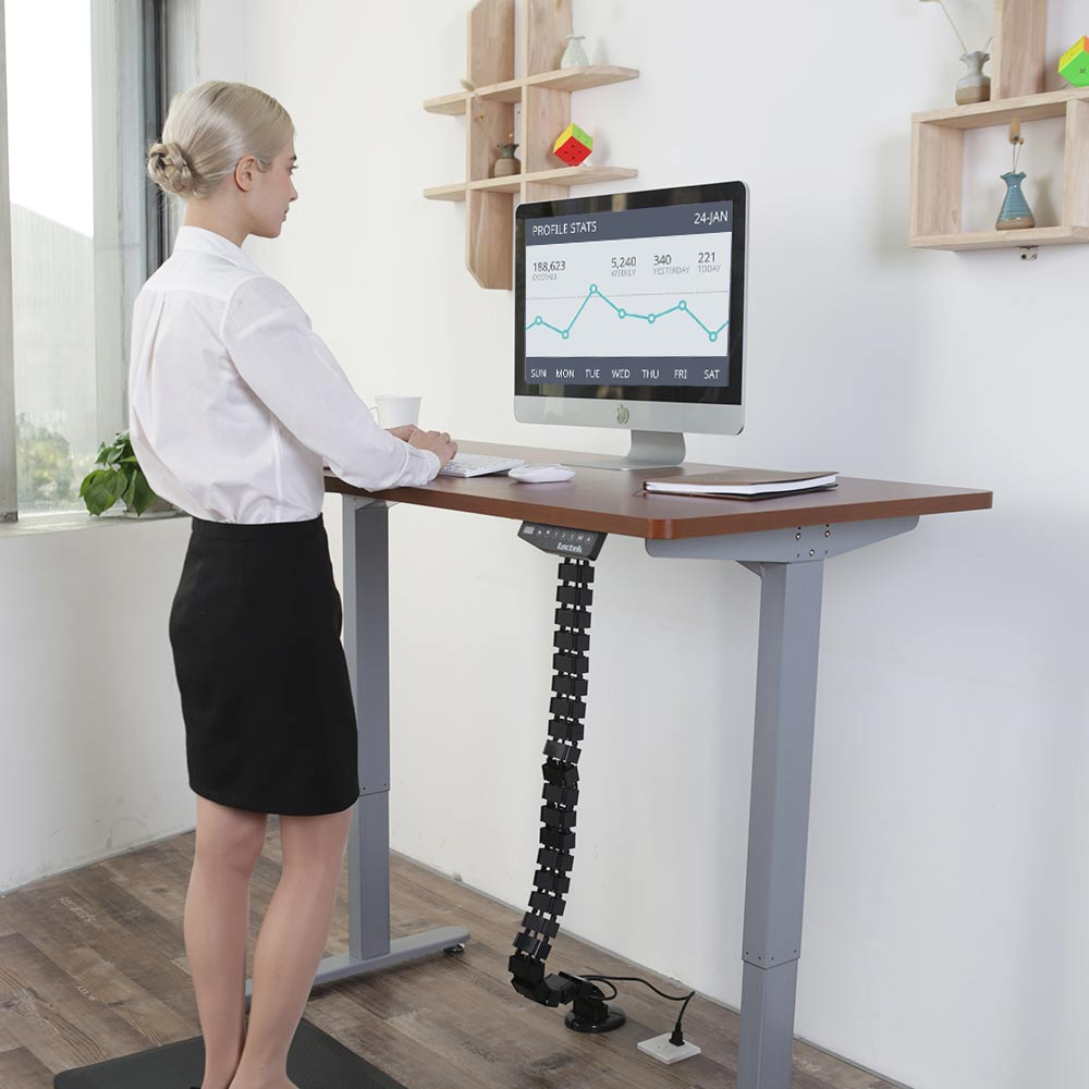 Loctek Had2 Height Adjustable Standing Desk Frame Loctek